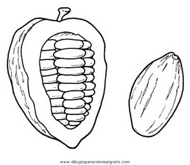 Cacao Pod Coloring Page Hand Art Drawing Coloring Pages Cacao