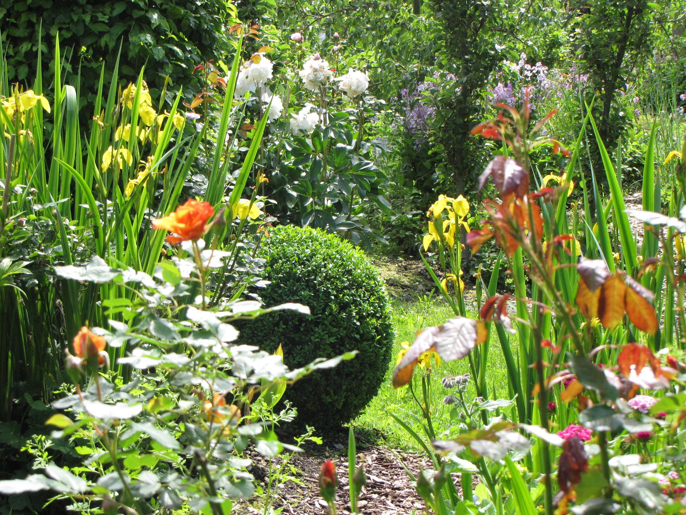 Paradiesgarten Maag Im Allgau Design Garten Von Sibylle K Maag Www Paradiesgarten Eu Garten Allgau Paradiesgarten Bauerngarten Garten Paradies