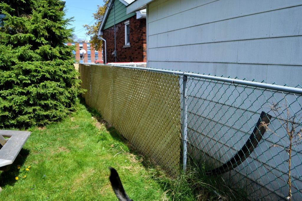 Chain Link Lattice Chain Link Fence Privacy Yard Privacy
