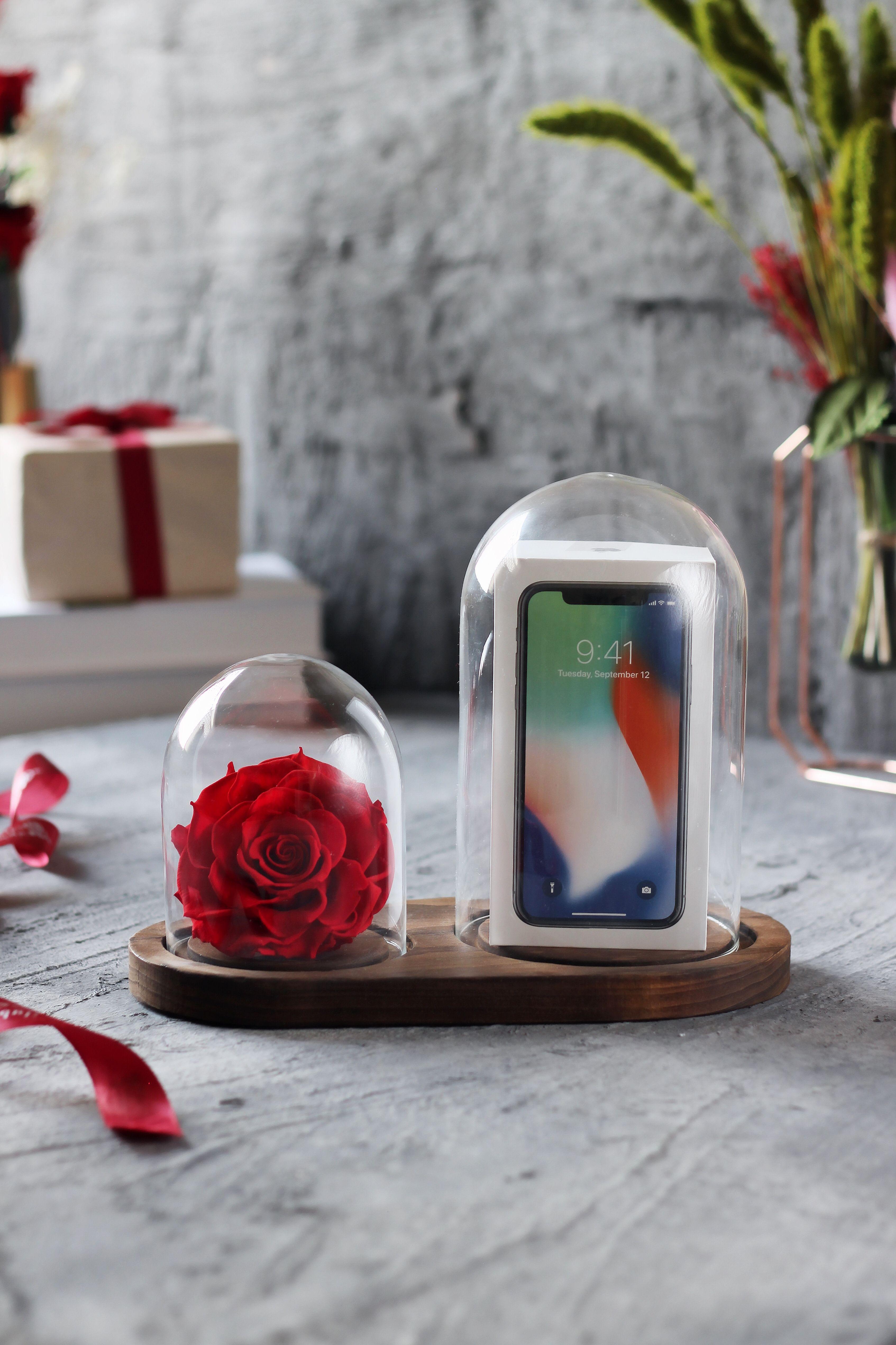 وردة ايلوبا روز احمر داخل فازة زجاجية Online Gift Store Gift Store Gifts