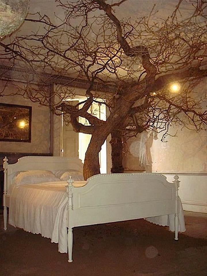Fairytale Bedroom Put Lights On The Tree To Make It Look Like
