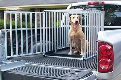 Great Day Big Dog Travel Kennel Portable Dog Kennels For Truck
