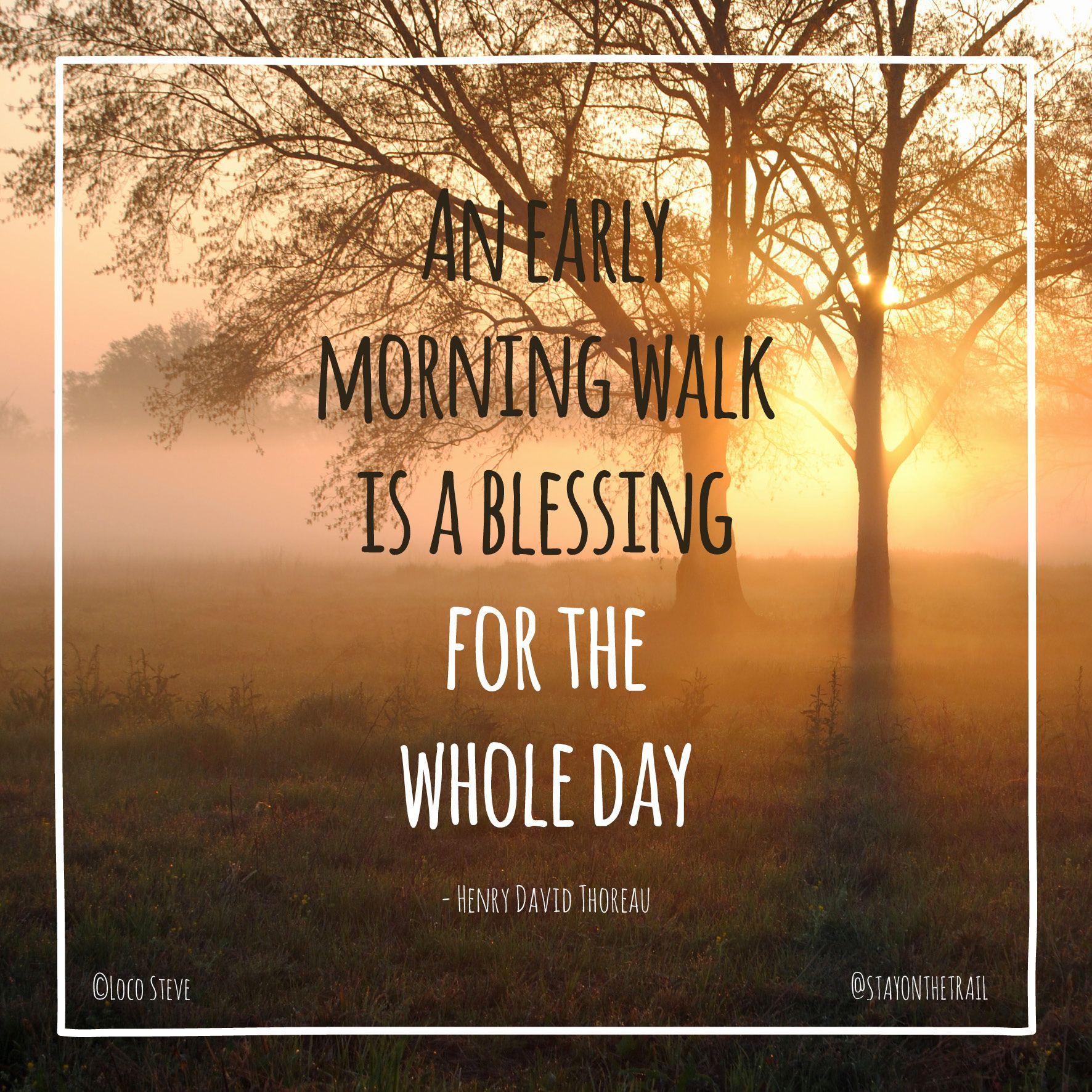 'An Early Morning Walk Is A Blessing For The Whole Day