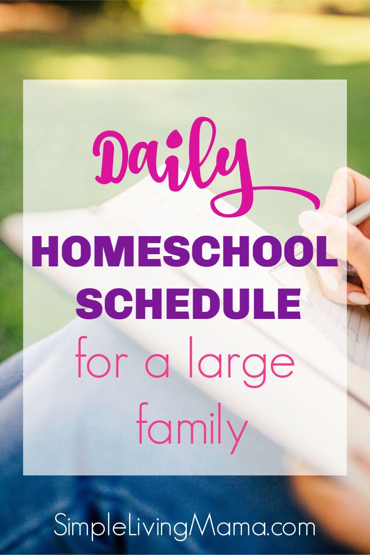 Photo of Horario diario de educación en el hogar