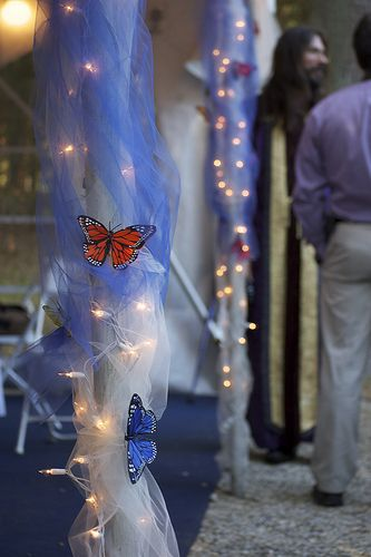 Matt & Katherine's Wedding - butterfly decorations