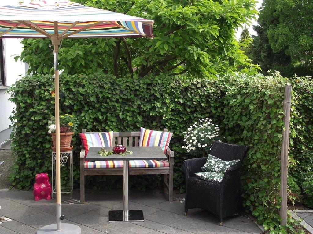 schnellwachsende hecke efeuhecke deutschland utting pflanzfertige heckenelemente. Black Bedroom Furniture Sets. Home Design Ideas