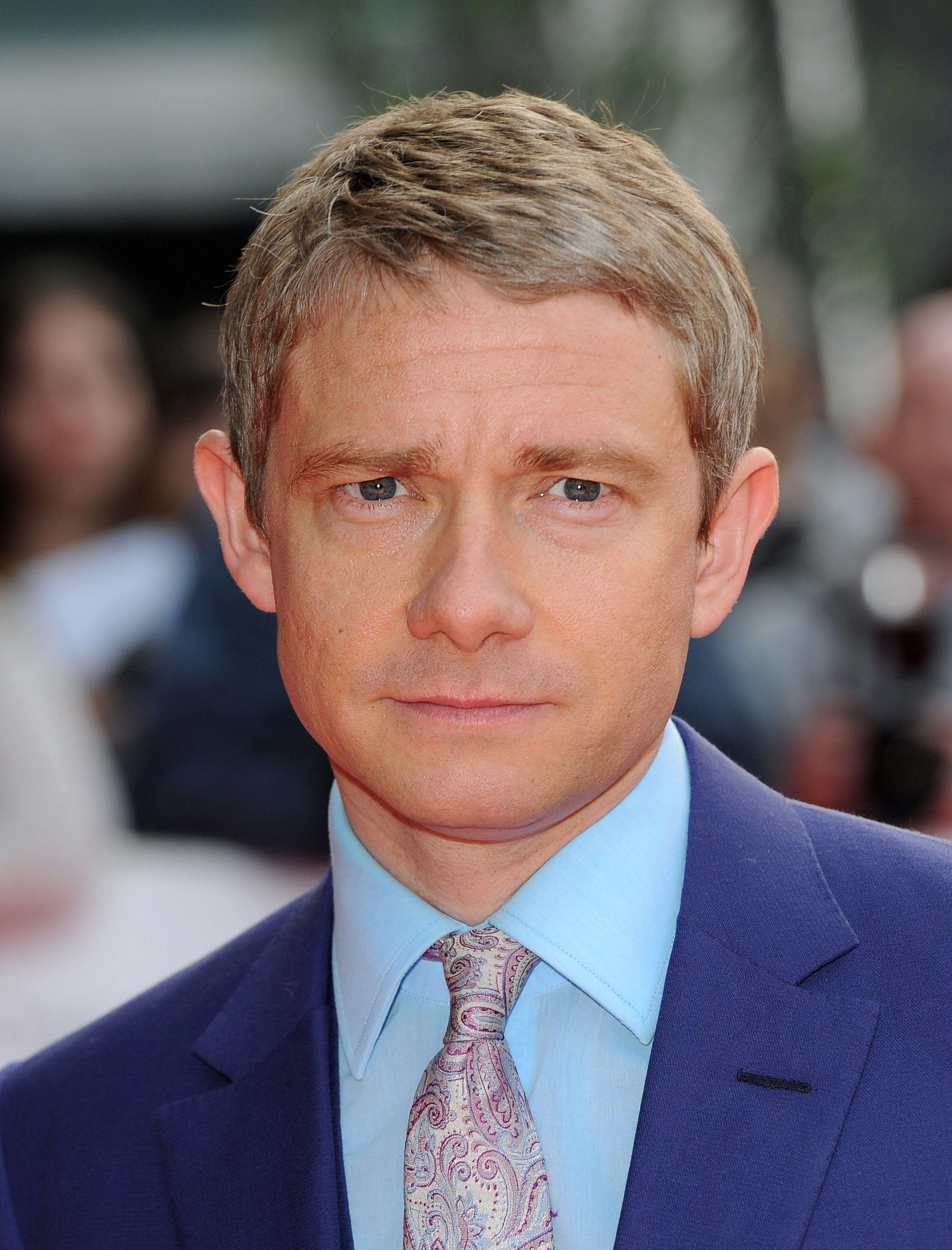 picture Martin Freeman (born 1971)