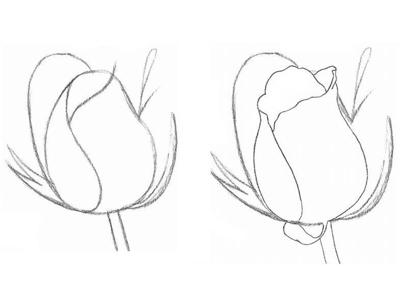 рисовать картинки простым карандашом легко и красиво поэтапно экскурсии парфинский фанерный
