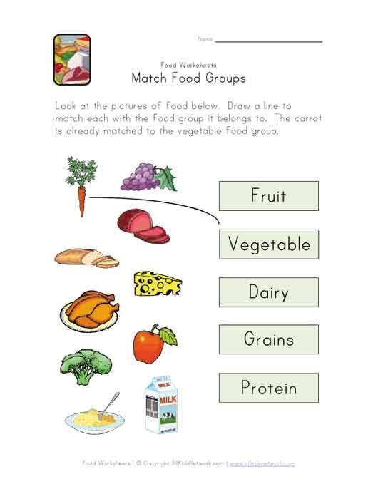 Food Worksheets For Preschoolers : Match food groups worksheet science activities for the