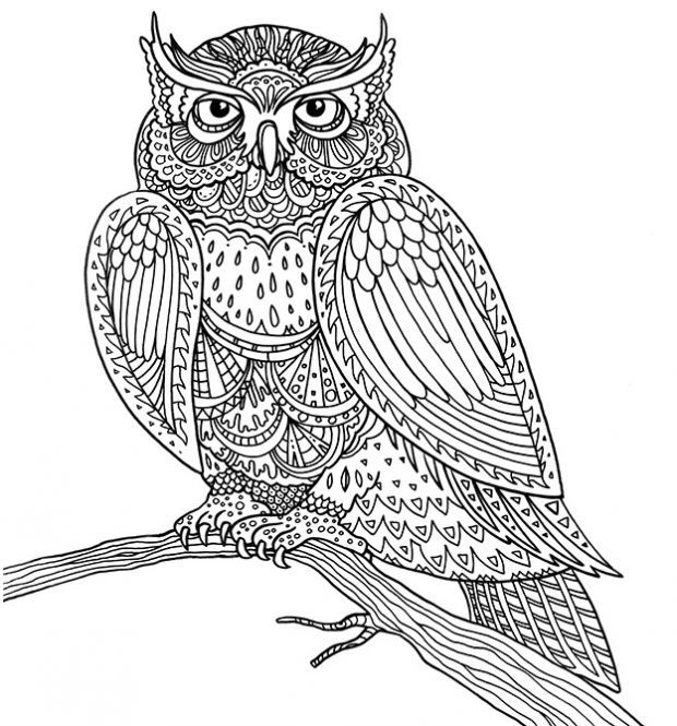 Pin Auf Colouring Pages
