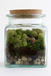 DIY terrarium-use miniature people/superheros from hobby shop (train models), my little one would love this!