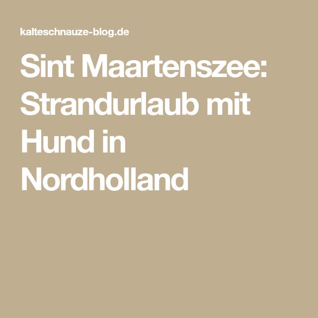 Sint Maartenszee Strandurlaub Mit Hund In Nordholland Nordholland Strandurlaub Urlaub