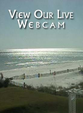 Pin On Surf City Nc Services And Information