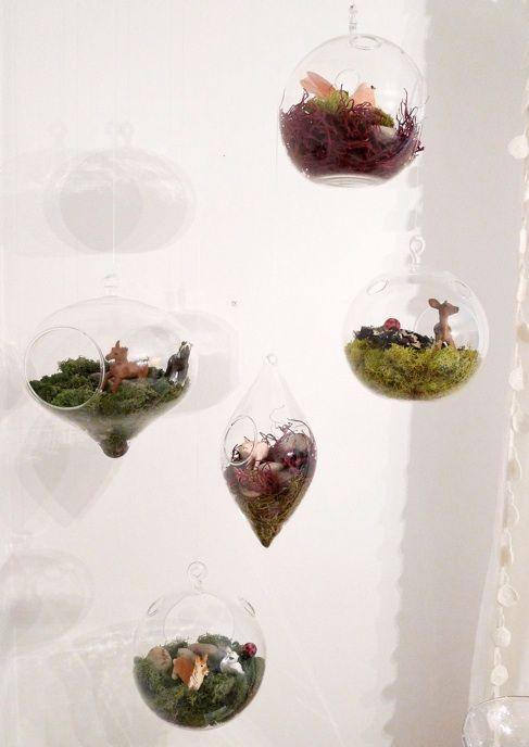 Mini Glass Terrariums Random Pretties Pinterest Terraria