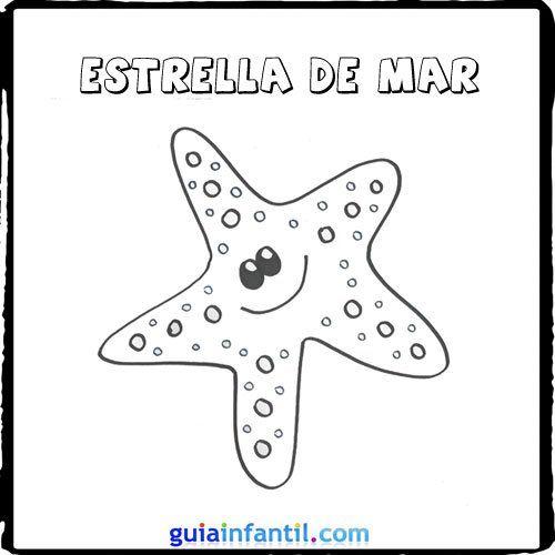 Dibujo de una estrella de mar para pintar con los nios  Dibujos