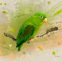 Inspiration: 35 Wonderful Website Headers — Tuts