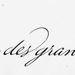 Lettrages & Calligraphie | Patrick Amblevert