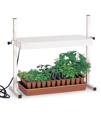 Burpee Table Top Grow Light Just Plug In And Grow Give Your Seeds The Right Kind Of Light So They Will Grow Lights Seed Starting Indoor Vegetable Gardening