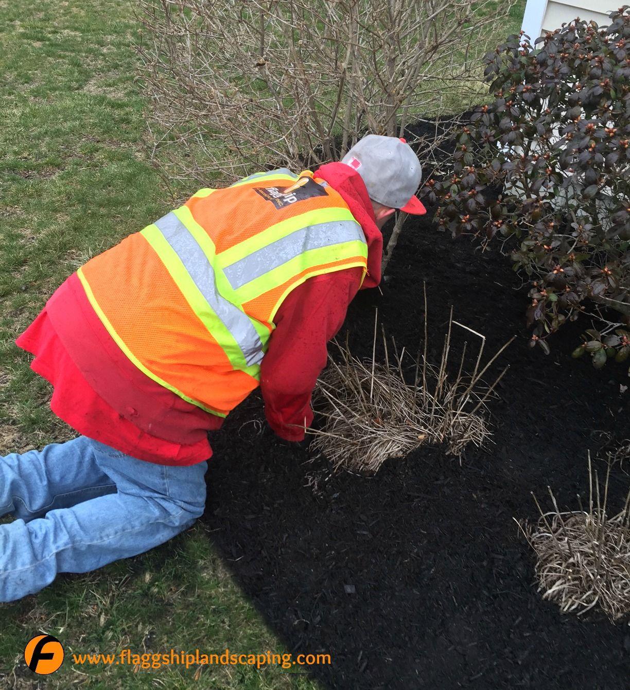 Benefits of proper mulching helps reduce soil moisture loss