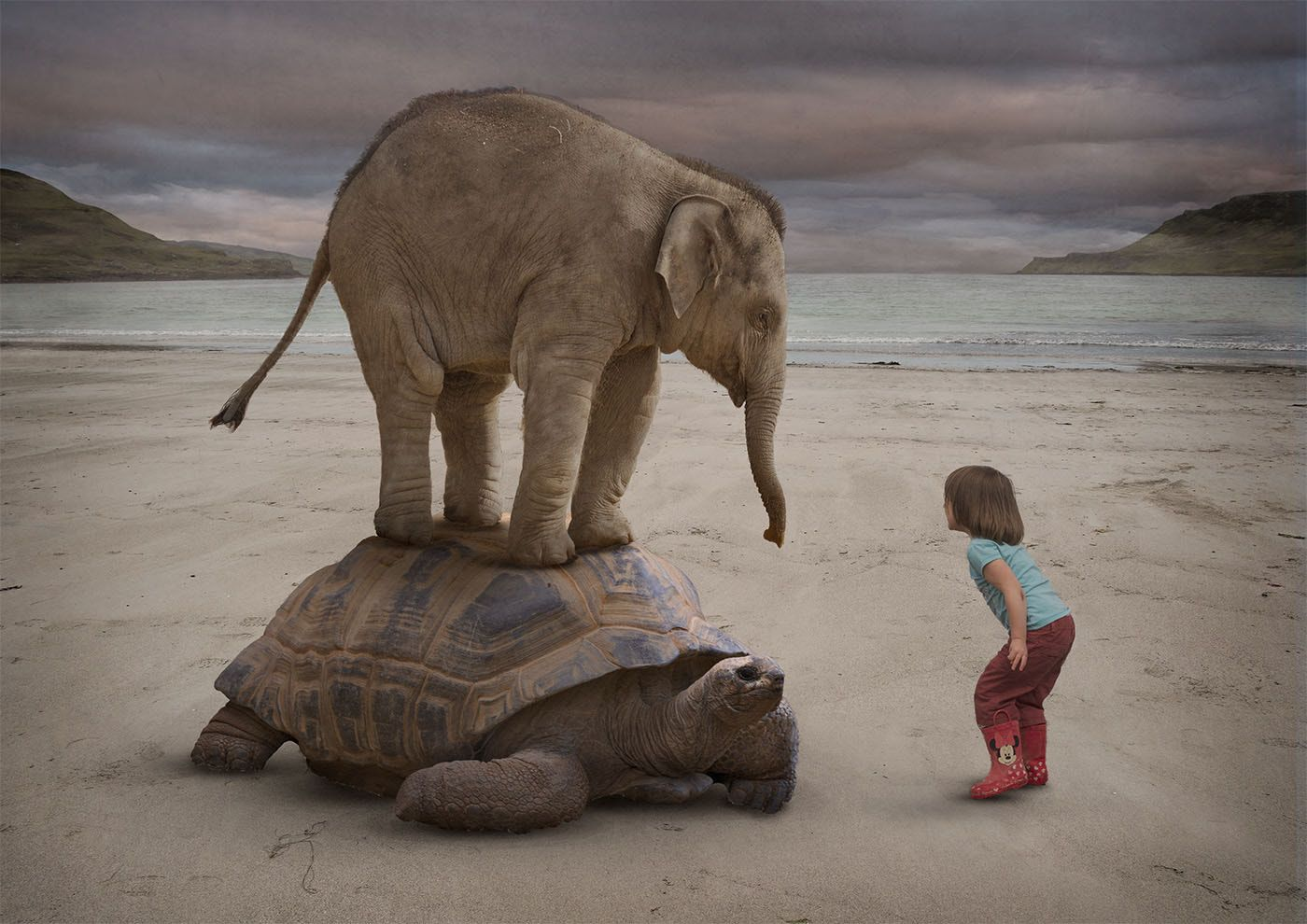 Piggy Back Elephant Tortoise And Child With Images Cute