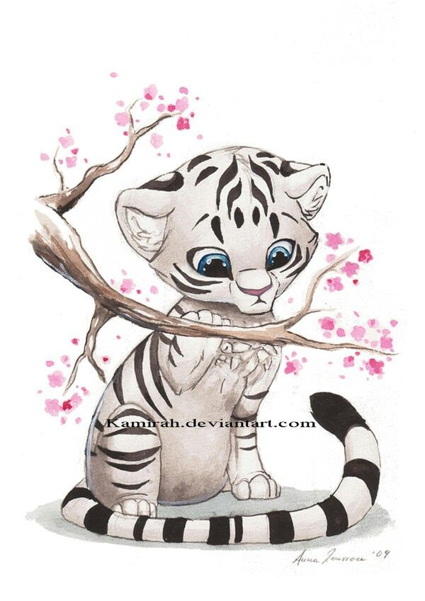 How To Draw A Cute Anime Cat Step By Step Cat Drawing Tutorial Cartoon Drawings Animal Drawings