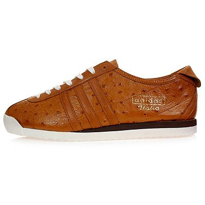 adidas italia superstar