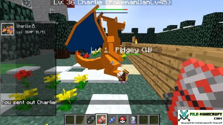 Minecraft Pokemon Fun Slide