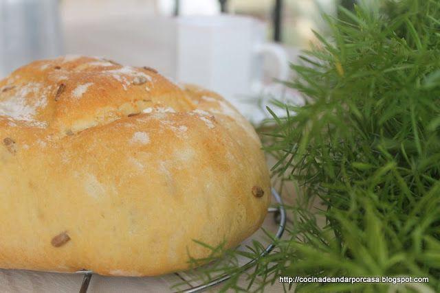 Cocina Compartida Pan Milagro Con Pipas De Girasol En Bolsa De Asar Pipas De Girasol Pan Milagro Pan