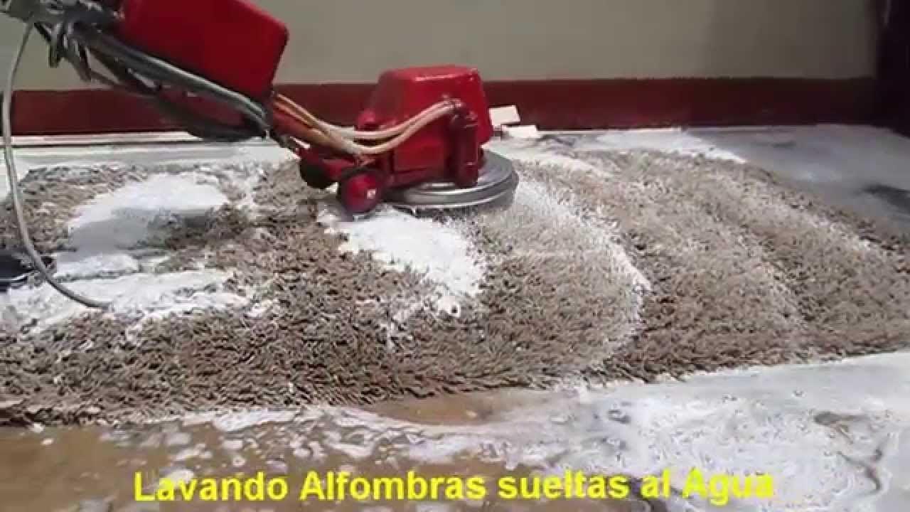 limpiar alfombras de pelo largo   Alfombras de pelo