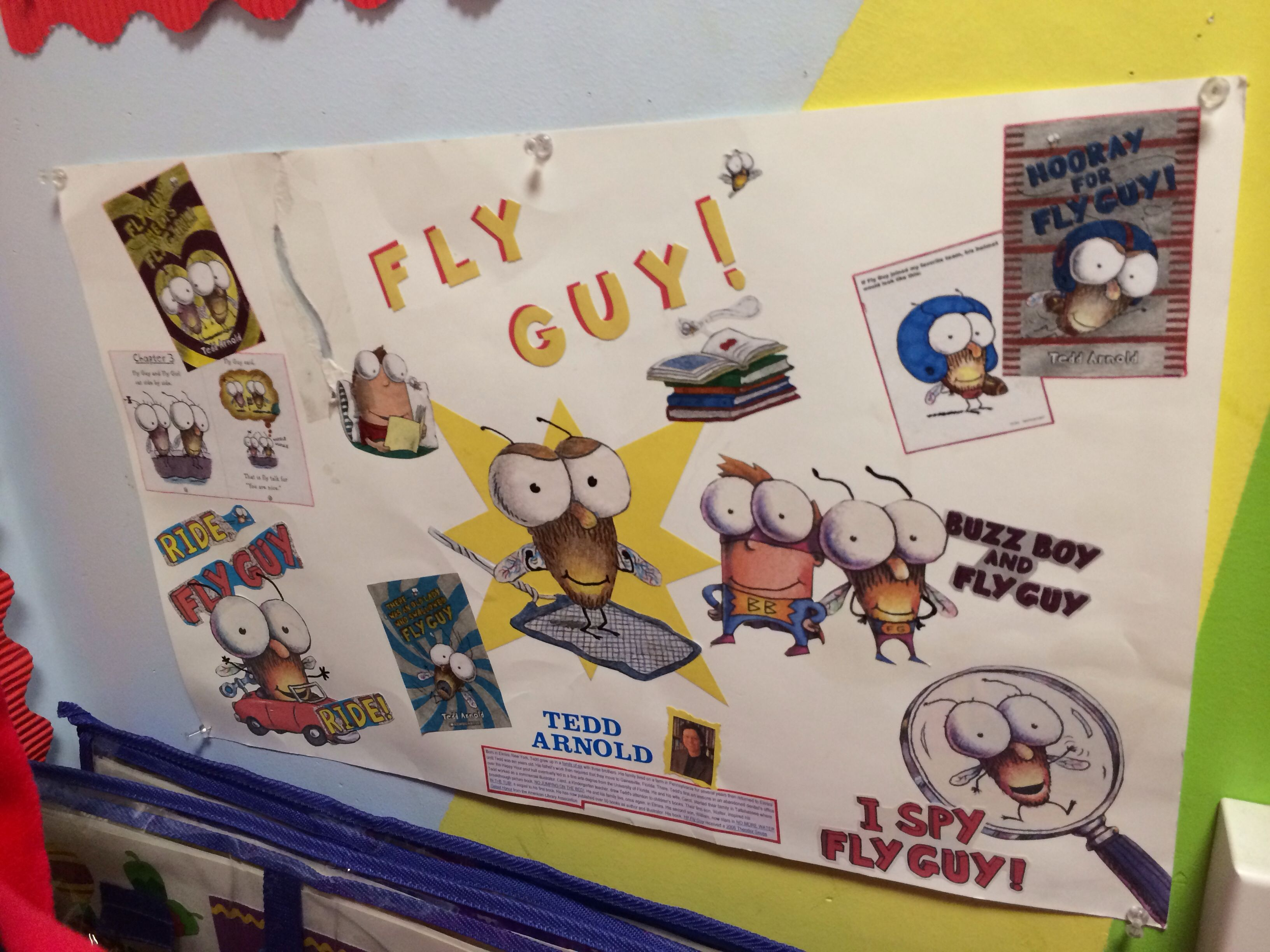 Fly Guy Display