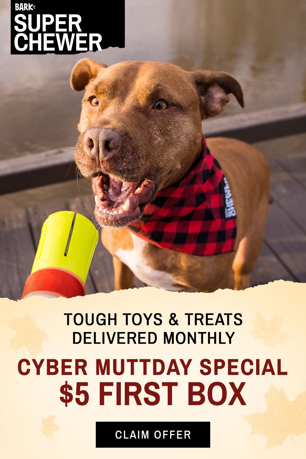 For Just 5 You Can Get Your Dog A Box Full Of Tough Toys Treats