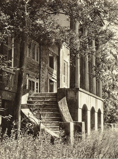 "Pin on Southern ""Tara's"" Old Southern Plantations and Mansions"
