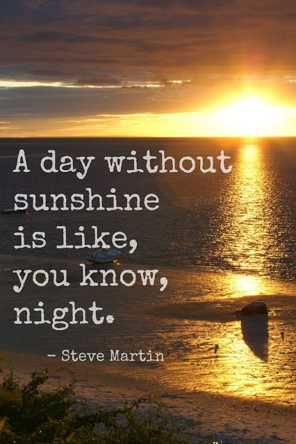 """""""A day without sunshine is like, you know, night."""" - Steve Martin"""