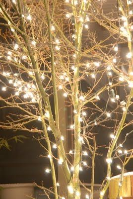 Pin By Cheryl E On A Neutral Noel Outdoor Christmas Lights Christmas Lights Outdoor Christmas