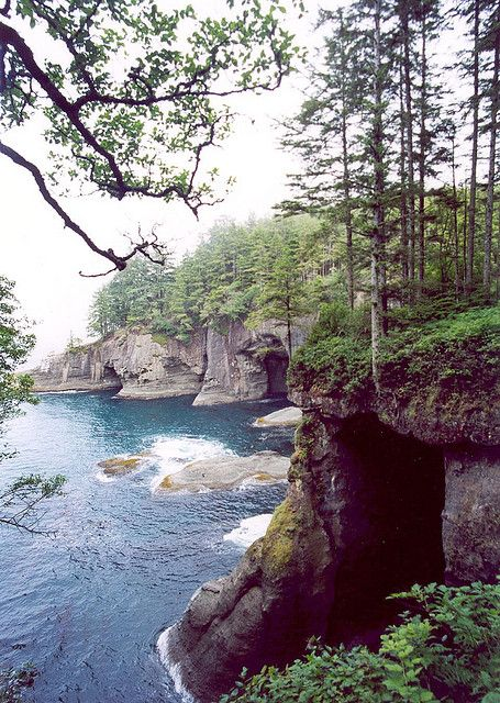 Washington state - Neah Bay. So ready to have my car here next year for adventures to places like this.