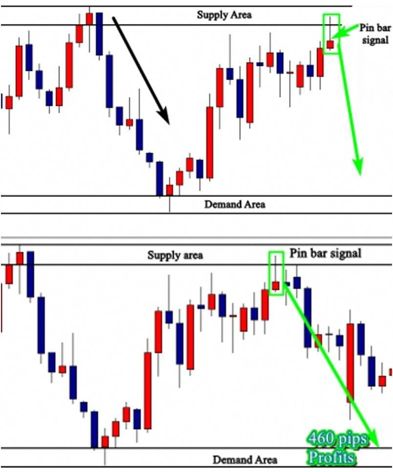 What Are Most Common Market Indicators Forex Traders Follow Price Action