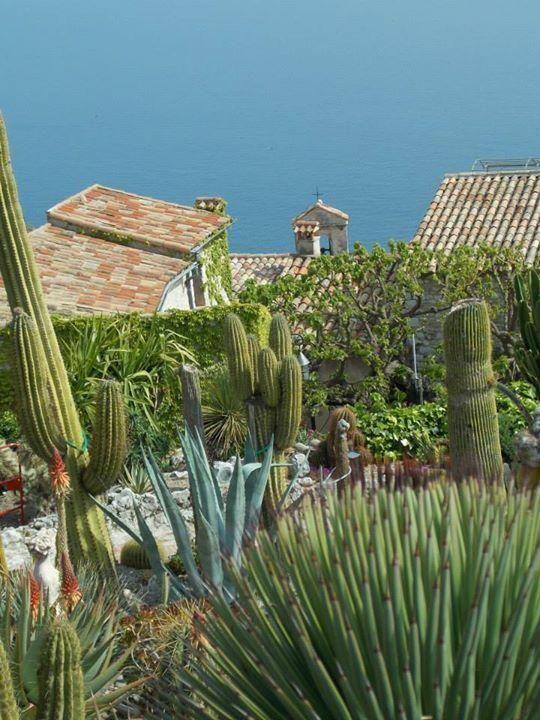 Le Jardin Exotique D Eze Eze See 851 Reviews Articles And 850