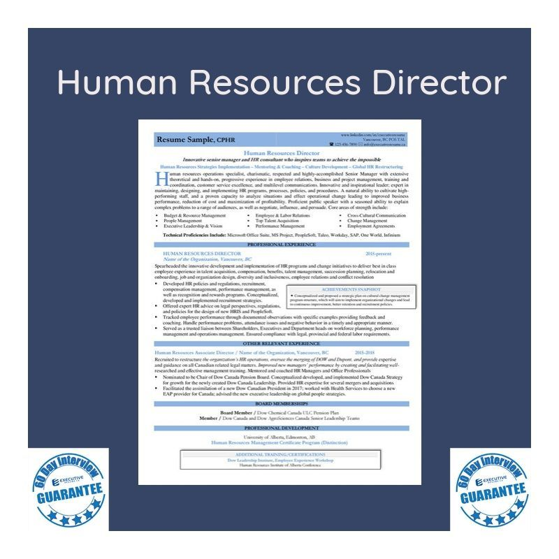 Professional Branded Resume Sample Human Resources Director