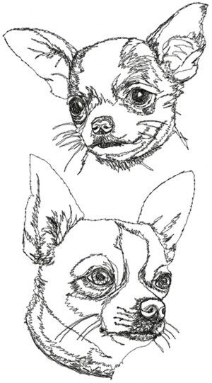 Advanced Embroidery Designs - Chihuahua (Smooth Coated) Set | Animal ...