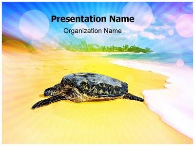 Turtle Beach Powerpoint Template Is One Of The Best Powerpoint