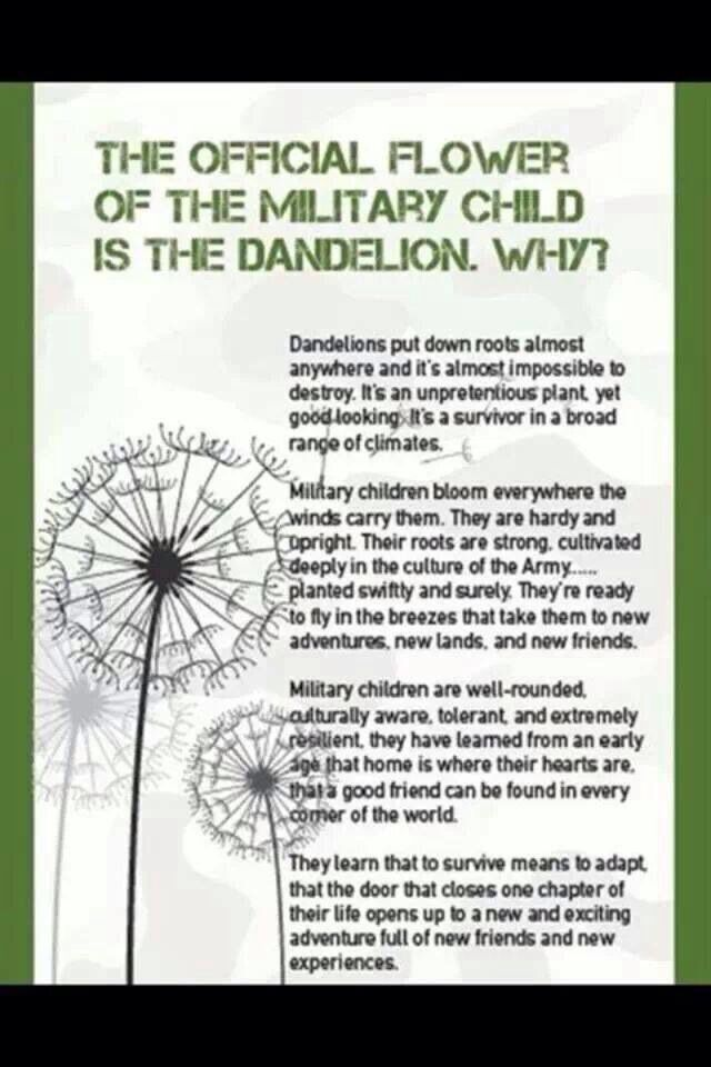 The Dandelion Is The Represents Military Brats A Subsection Of The