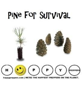 Native Americans, the pine tree offers and abundance of survival uses. Visit  http://happypreppers.com/pine-cone.html