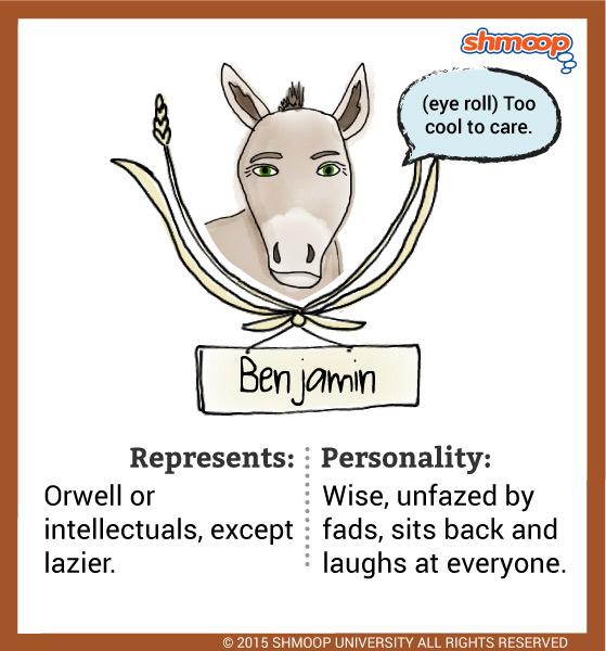 Benjamin A Donkey In Animal Farm Animal Farm Book Farm Animals Animal Farm George Orwell