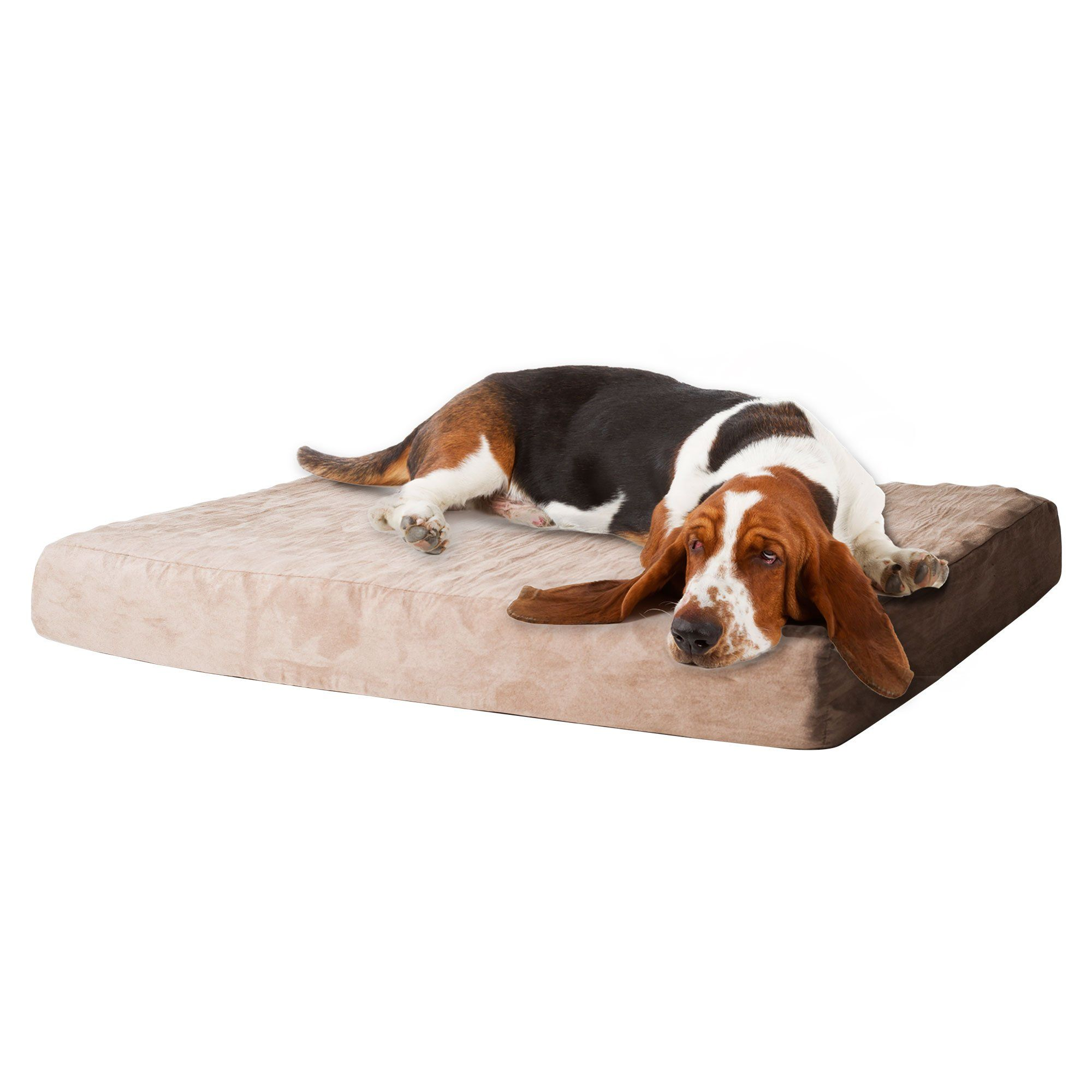 support en category bedding shop foam memory and available orthopedic center beds petco bolster more bed dog petcostore options