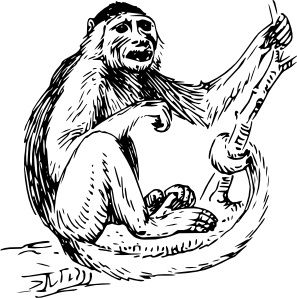 Monkey Pictures And Coloring Pages Monkey Art Monkey Pictures Sharpie Art