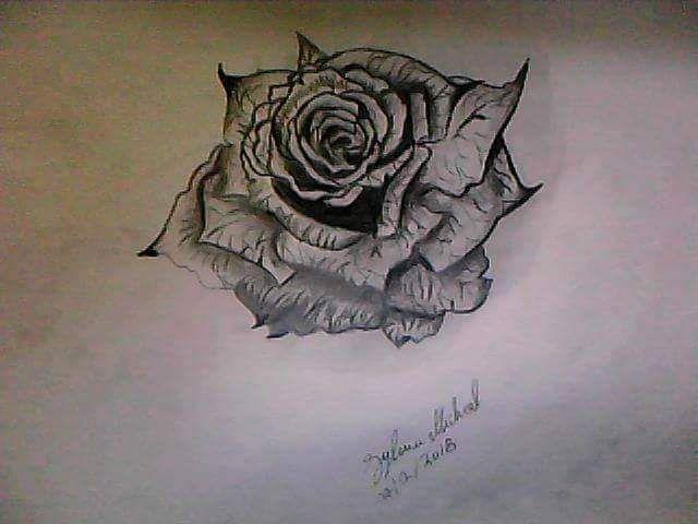 رسم وردة بالرصاص By Sylvia Michael طفرة جوز Animal Tattoo Tattoos Art