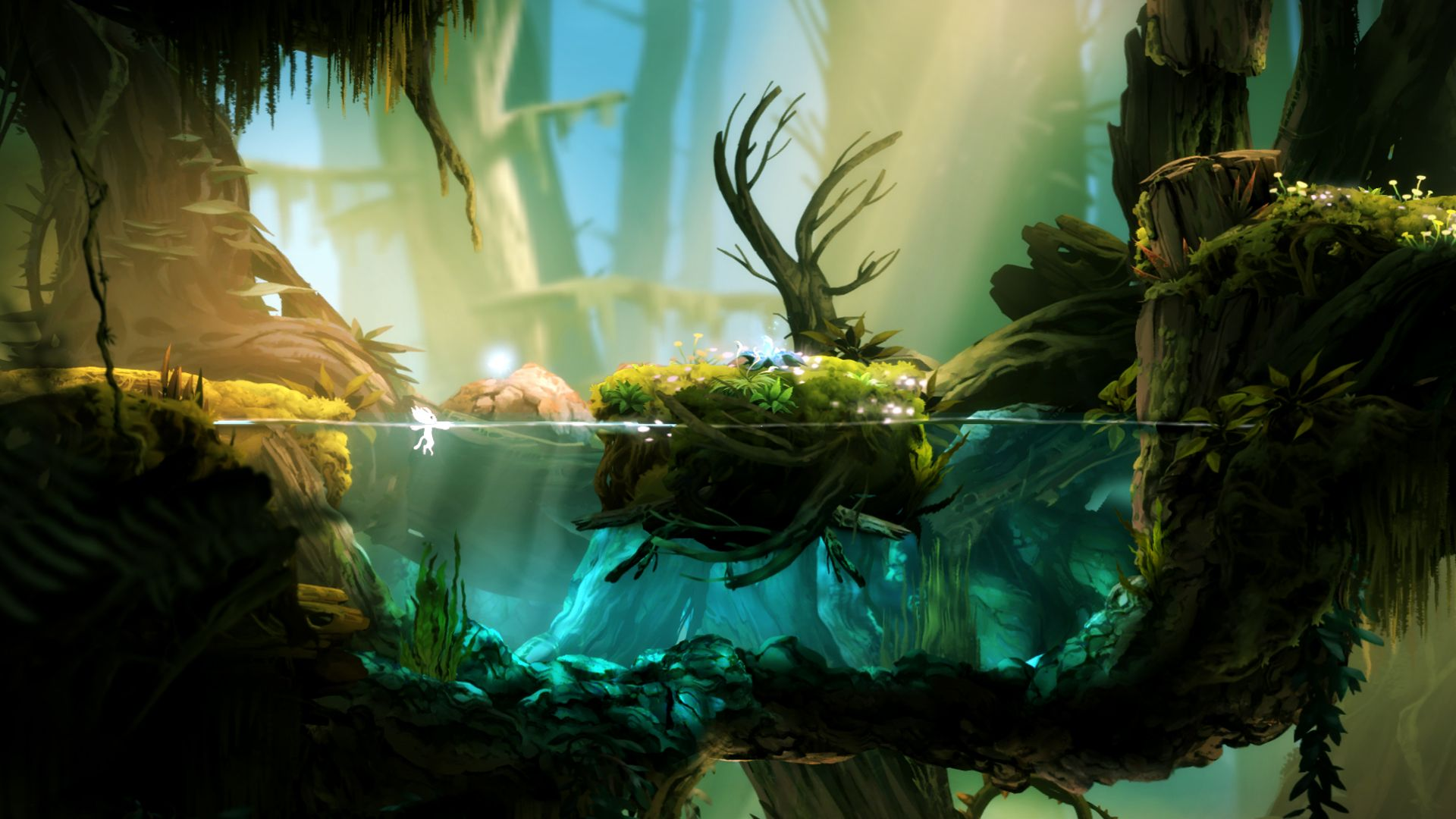 Ori And The Blind Forest 1920x1080 Need Iphone 6s Plus Wallpaper Background For Iphone6splus Fo Forest Games Environment Concept Art Forest Wallpaper