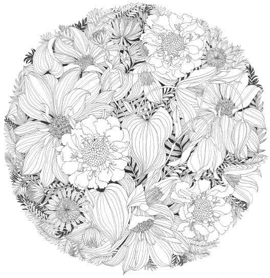Floribunda A Flower Coloring Book Wallpaper Grayscale Coloring Coloring Books Flower Coloring Pages