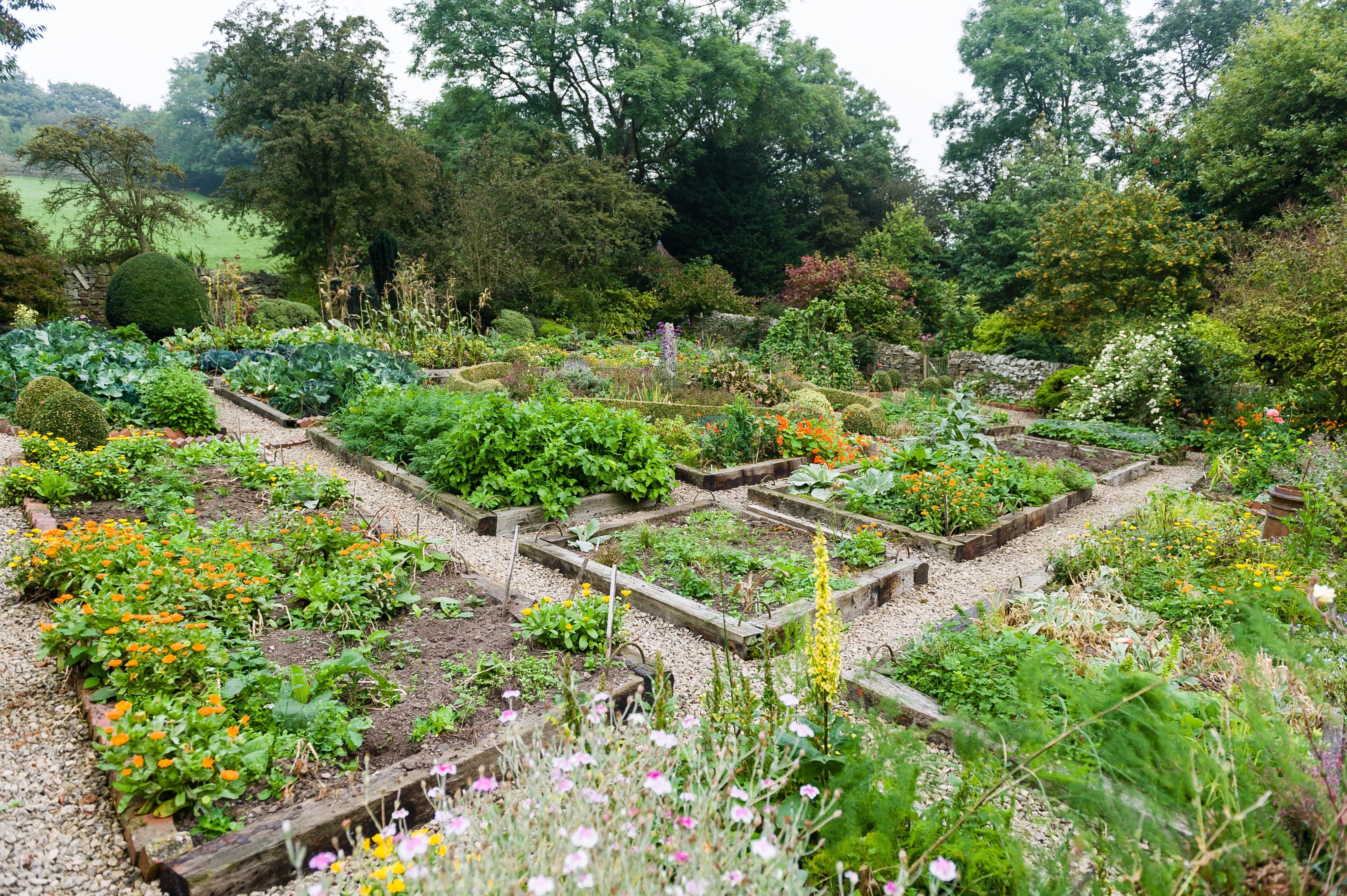 Victorian Vegetable Garden at Horsleygate Hall in the Peak ...