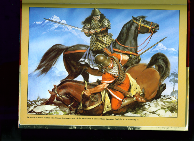Pictures Of Warriors Who Adopted Steppe Warfare Steppe History Forum War Art Ancient Warfare Ancient Warriors